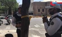 İran'da son 10 ayda 580 ton uyuşturucu ele geçirildi