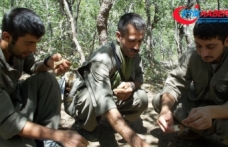 Metropollerde saldırı yapmak üzere eğitilen PKK'lı 4 terörist tutuklandı