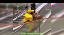 Kamerun'da halkın yürüyen merdivenle imtihanı