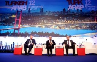 Başbakan Yardımcısı Şimşek 12. Türk Arap Ekonomi...