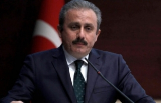 Milli Mutabakat Komisyonu üyeleri Erdoğan'a...