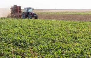 Türkiye son 10 yılda tarım alanlarının yüzde...