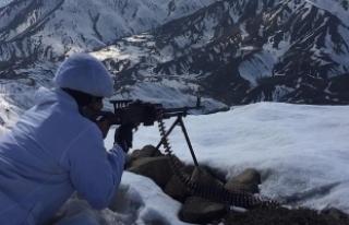 Terör örgütü PKK'ya martta büyük darbe...