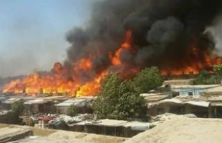 Afganistan'da 235 sivil Taliban'ın elinden...