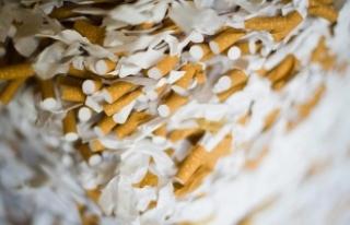 """""""Sigarayı kendi başına bırakanların yüzde..."""