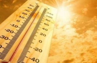 4 il için sıcaklık uyarısı