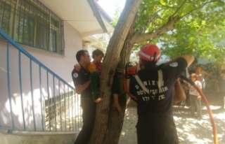 Ağaçtan düşerken dallara sıkışan çocuğu itfaiye...