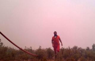 Mersin'deki orman yangını 3 gündür devam...