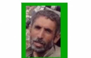 Bingöl'de öldürülen 11 PKK'lıdan Çotak'ın...