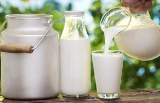 Bitkilerinize Su Yerine Süt Verin, Bakın Ne İşe...