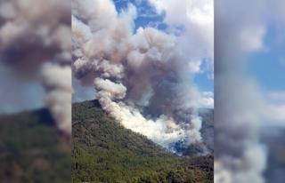 Kazdağları'nda 4 ayrı noktada orman yangını...