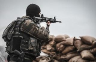 Şırnak'ta 2 PKK'lı terörist etkisiz...