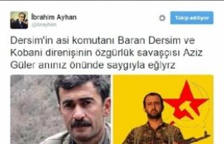 HDP milletvekili Ayhan'a, 1 yıl 3 ay hapis