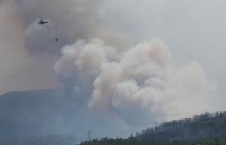 İzmir'deki yangın 100 hektardan fazla alanda...