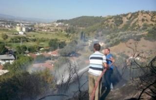 Salihli'de 1 hektarlık orman yandı