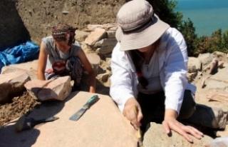 Teion Antik Kenti'ndeki kazılara ABD'li...