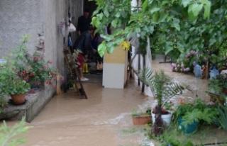 Yalova'da şiddetli yağış