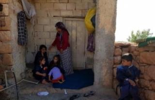93 kişinin zehirlendiği Aktaş Köyü'nde yaşam...