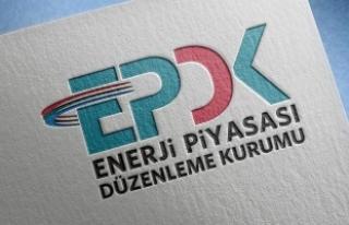 EPDK'dan 9 akaryakıt şirketine 2,7 milyon lira...