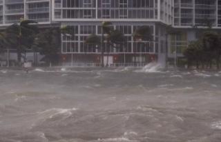 Florida'da Irma kasırgasının ardından 180...