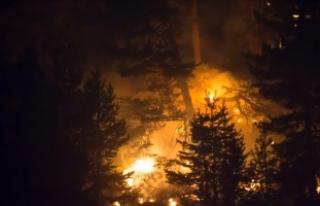 Kütahya'daki orman yangınının ilerlemesi...