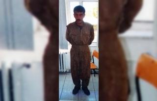 PKK'lı teröristi, yağmaladığı 42 numara...