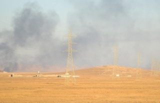 Sincar'da, terör örgütü PKK ve Haşdi Şabi...