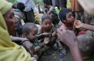'Açlık, Arakanlı Müslümanlara soykırım...