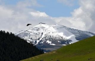 Doğu Anadolu'nun yüksek kesimlerinde kar yağışı...