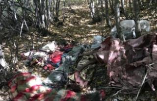 Kars'ta terör operasyonu: PKK'ya ait 4...