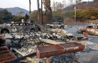 Kaliforniya'daki yangında ölü sayısı 31'e...