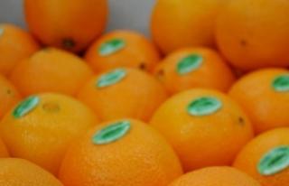 """""""Meyve suyu nektarları insan yaşamında su..."""