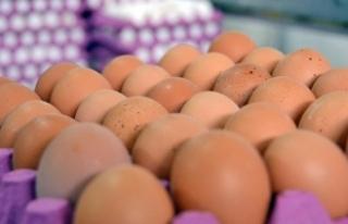 Yumurta silahtan sayıldı