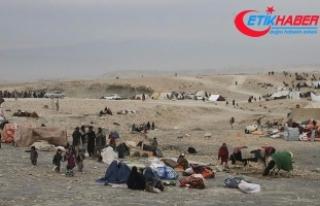 Afganistan'da 9 bin aile DEAŞ-Taliban çatışmasından...