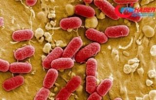 """""""Hekimler antibiyotik reçete ederken iki kez..."""
