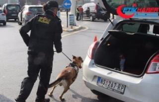 İstanbul'da bin polisle Kurt Kapanı-10 operasyonu