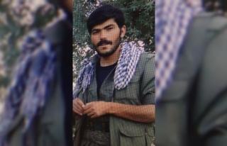 """Terör örgütü PKK'nın """"Karayazı-Eleşkirt..."""