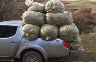 12 milyon değerinde uyuşturucu yakalandı