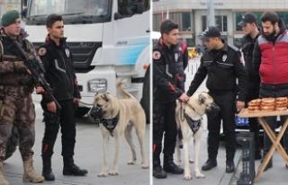 İstanbul'da Yılbaşında 215 Kişi Gözaltına...