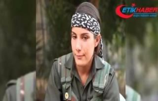 PKK'nın 'reklam yüzü' etkisiz hale...
