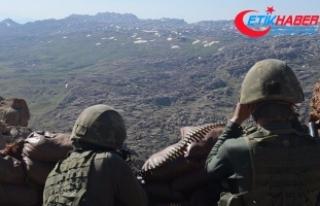 PKK terör örgütünün sözde bölge yöneticisi...