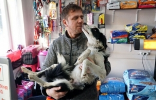 Veteriner, yaralı köpeği tedavi edip, sahiplendi