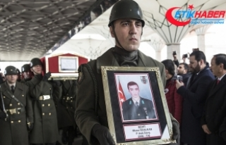 Cumhurbaşkanı Erdoğan: Üç beş soysuza bu sınırlarda...