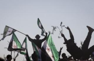 Suriyelilerden Zeytin Dalı Harekatı'na destek...