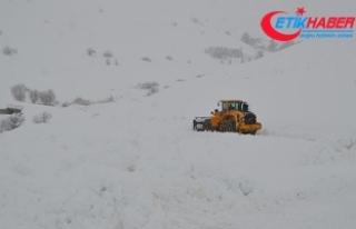 Van ve Bitlis'te 26 yerleşim biriminin yolu...