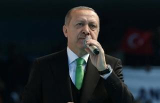Cumhurbaşkanı Erdoğan: Zeytin Dalı Harekatı'nda...