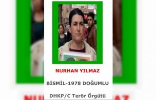 DHKP/C'nin üst düzey sorumlusu İstanbul'da...