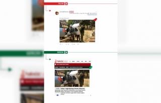 PYD/PKK yandaşları, Esed'in Halep yağmasını...