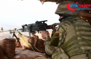 Şırnak'ta 3 PKK'lı terörist etkisiz...