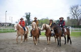 ABD'li kovboyların Türk atlarıyla imtihanı